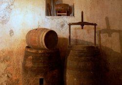 Stort udvalg inden for vin, øl og whisky